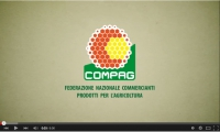 compag_video