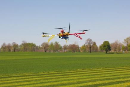 Droni e parassitoidi, la chiave è la professionalità