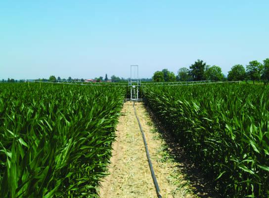 irrigazione moderna