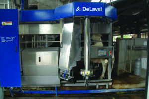 Uno dei due robot DeLaval nell'azienda Cremonesi