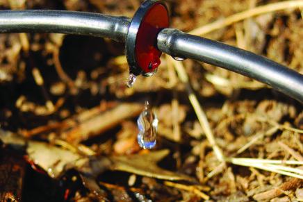 Allarme siccità, non c'è futuro senza un'irrigazione efficiente