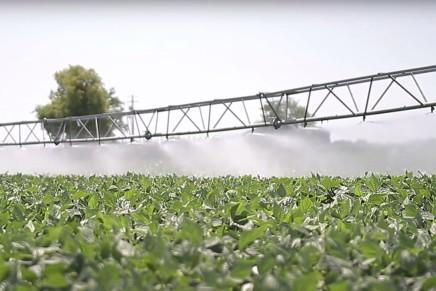 Coltivare con meno acqua e agrofarmaci, Conserve Italia ci prova