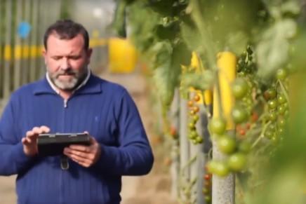 Software e App per la gestione delle aziende agricole