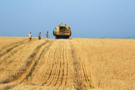 Innovazione, arriva la banca delle terre agricole