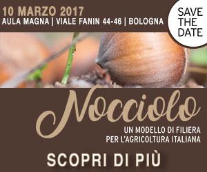 Nocciolo, un modello di filiera per l'agricoltura italiana