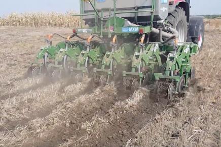 Mais e grano: «Più delle rese conta ridurre i costi»