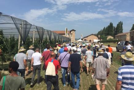 Nova Agricoltura in Frutteto: il videoracconto della giornata