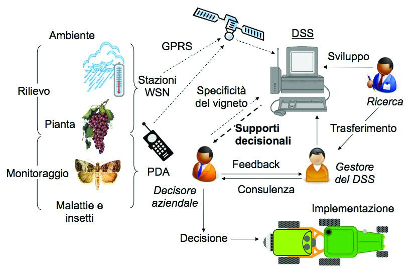 Schema di funzionamento del DSS Vite.Net