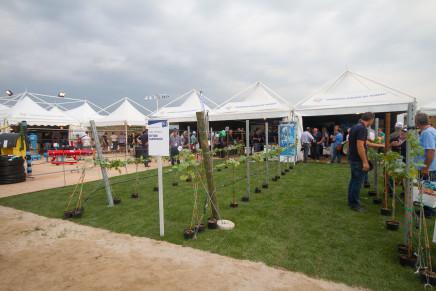 Agricoltura, le migliori strategie per aumentare la redditività