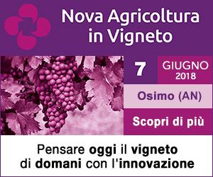 https://novagricoltura.edagricole.it/eventi/nova-agricoltura-in-vigneto-2018/