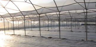 solarizzazione integrata